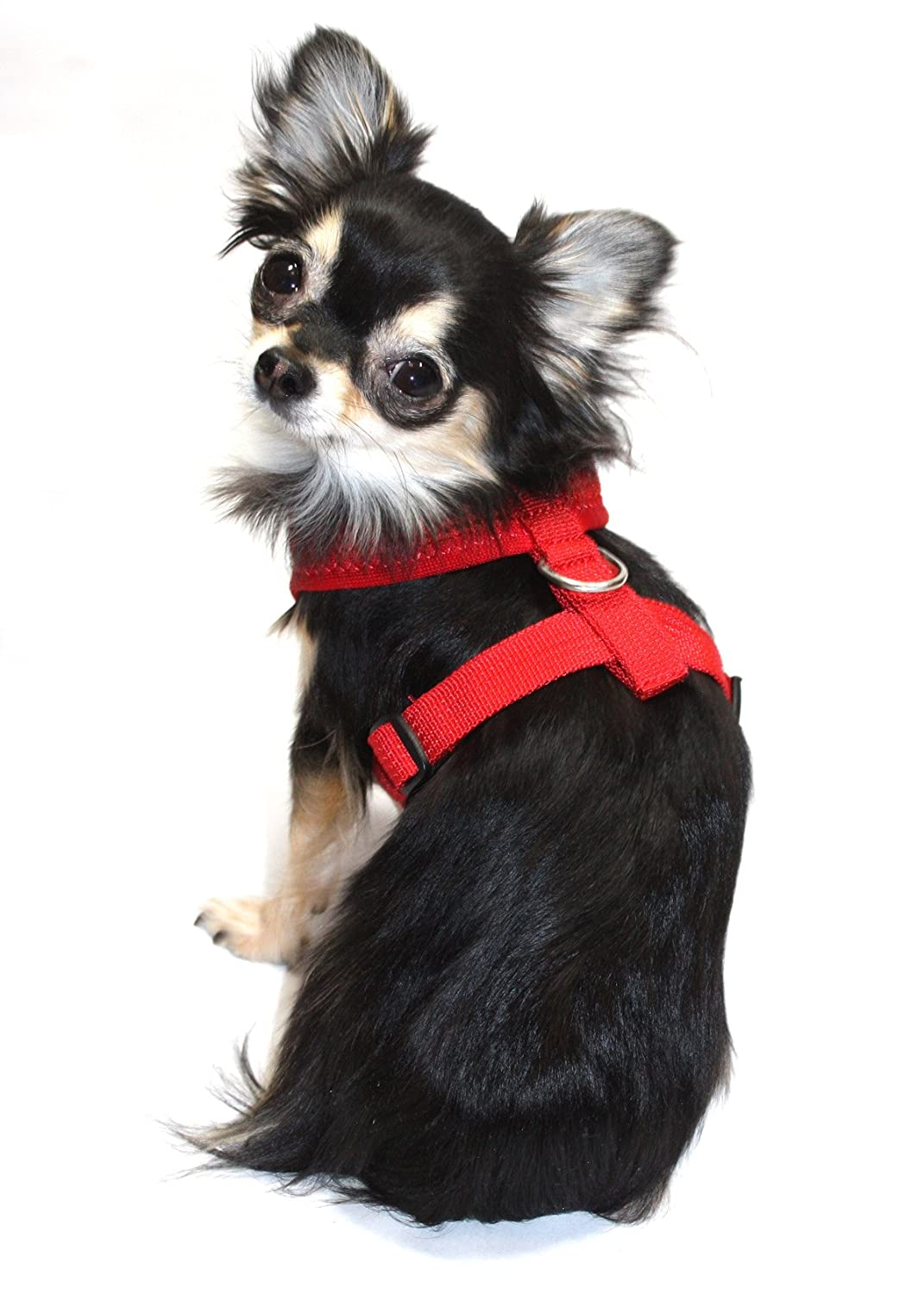 product over pet mesh shipping and dog padded overstock supplies free comfort on lucybelle harness orders comforter nylon lead pets