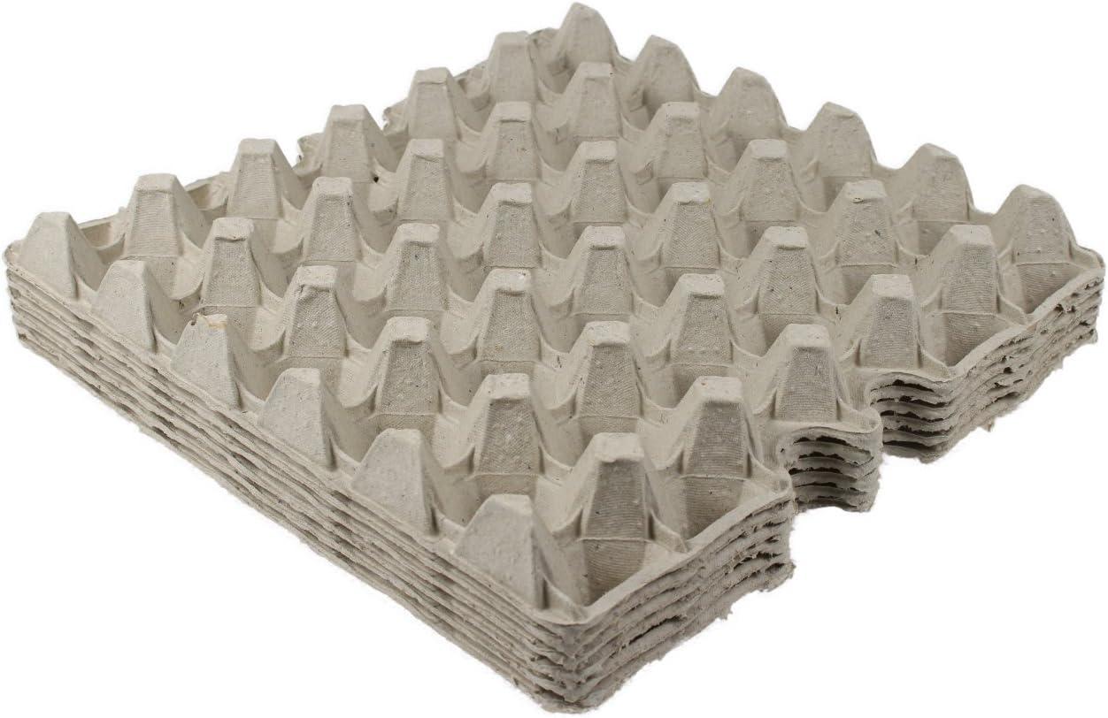20 St/ück BODA Creative Eierkarton mit Deckel f/ür 10 Eier Ostergeschenkverpackung hautfarben Eierschachtel mit Verschluss