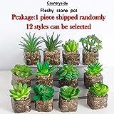 Sel-More 1pcs de Mini Plantas suculentas Artificiales Decorativas de Cactus Cactiferas - Plantas Artificiales