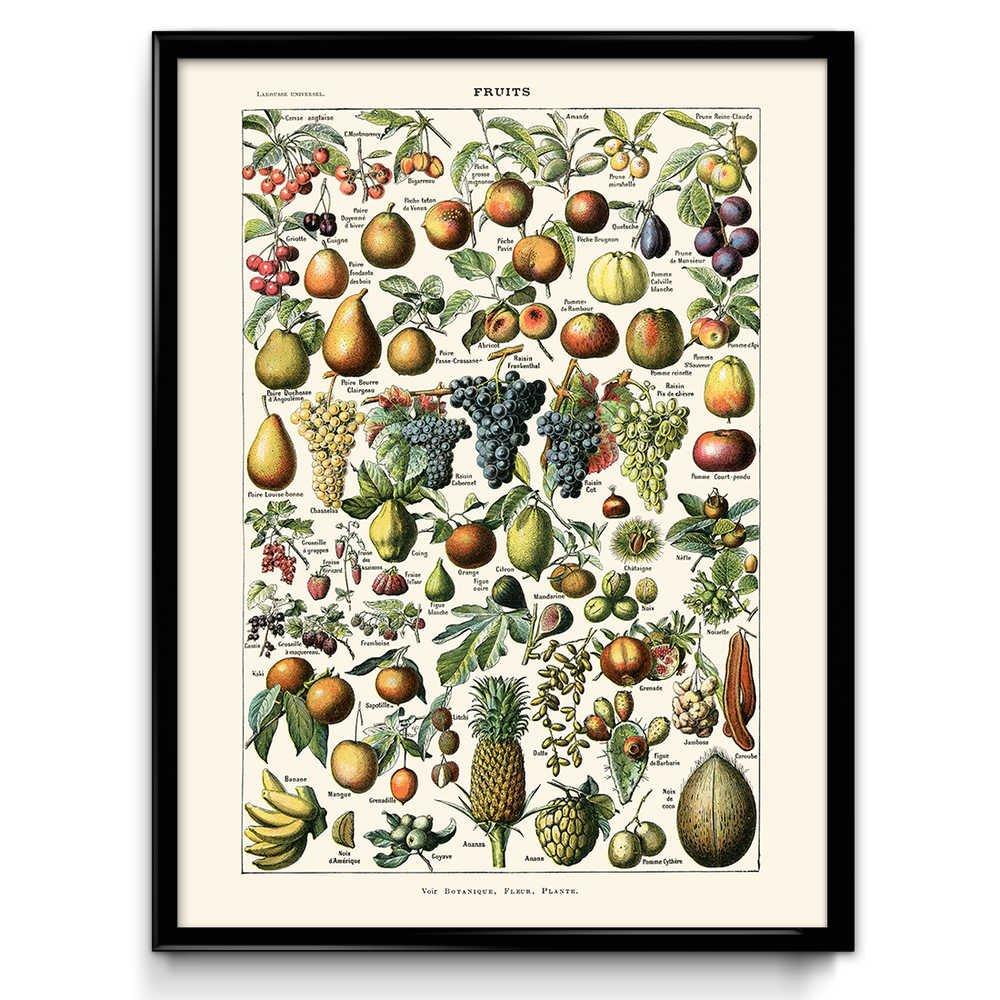 Vegetables and Fruit Vintage Print Set of 2 - Kitchen Decor - Kitchen Art -  Home Decor - Botanical Science - Larousse (18W x 24T)