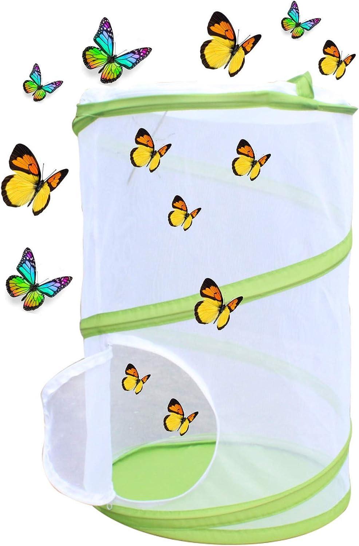 Caja de observación de insectos plegable transparente, caja de ...