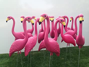 Amazoncom 30 Pink Yard Flamingos Large Patio Lawn Garden