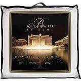Bellagio 400-Thread-Count Down Alternative Full/Queen Comforter in White