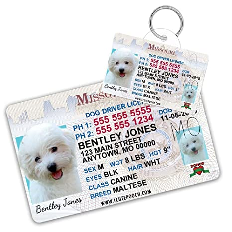 For Tags And Pet Custom Cats Pets Amazon Tag com Dog Cat Driver Personalized Id Card Missouri License - Supplies Wallet Dogs