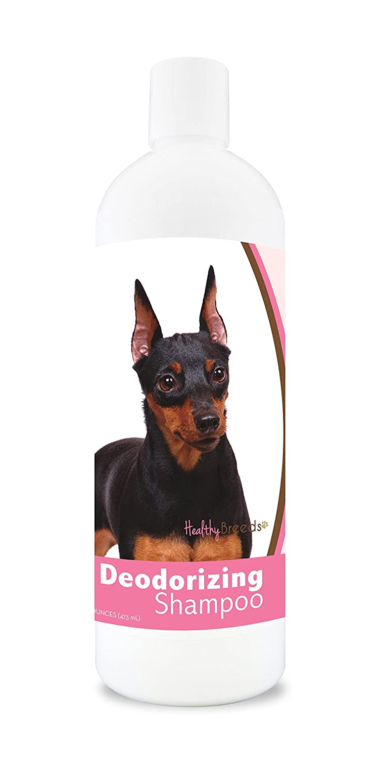 Healthy Breeds Deodorizing Dog Shampoo for Miniature Pinscher Over 200 Breeds Hypoallergenic Formula For Itchy, Sensitive, Dry, Flaking, Scaling Skin and Coat 16 oz