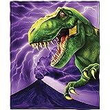 T-Rex Fleece Throw Blanket by Dawhud Direct