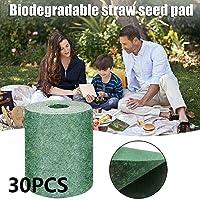 Meisi - Alfombrilla para semillas de hierba, 20 x 300 cm, todo en uno, alfombrilla de semillas, esterilla de inicio…