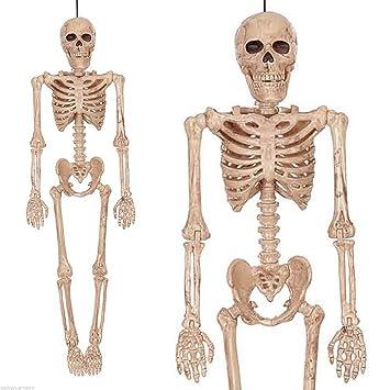 16 Gothic Halloween Horror Human Man Skeleton Hanging Prop
