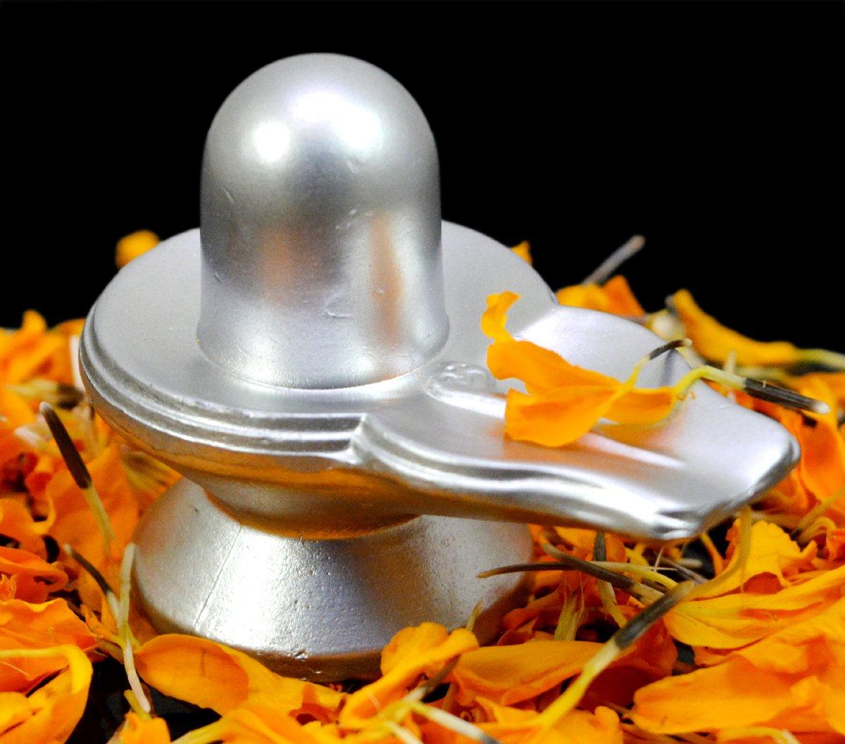 Image result for shivling pics,nari