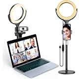 Elitehood 8'' Small Ring Light, Desk Ring Light with Weighted Metal Stand and Phone Holder for Computer & Laptop Video Record