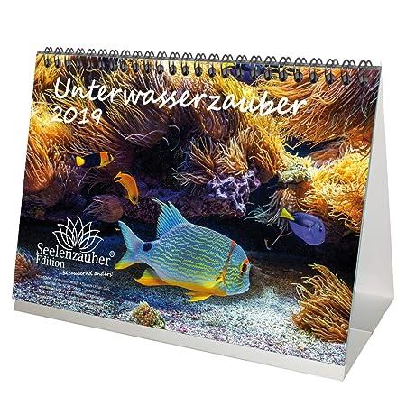 Sous l'eau magique – DIN A5 – Premium Calendrier de bureau/calendrier 2019 – Sous l'eau – plongée – Poissons – Mer – Coffret cadeau avec 1 carte de vœux et 1 carte de Noël – Édition âme magique