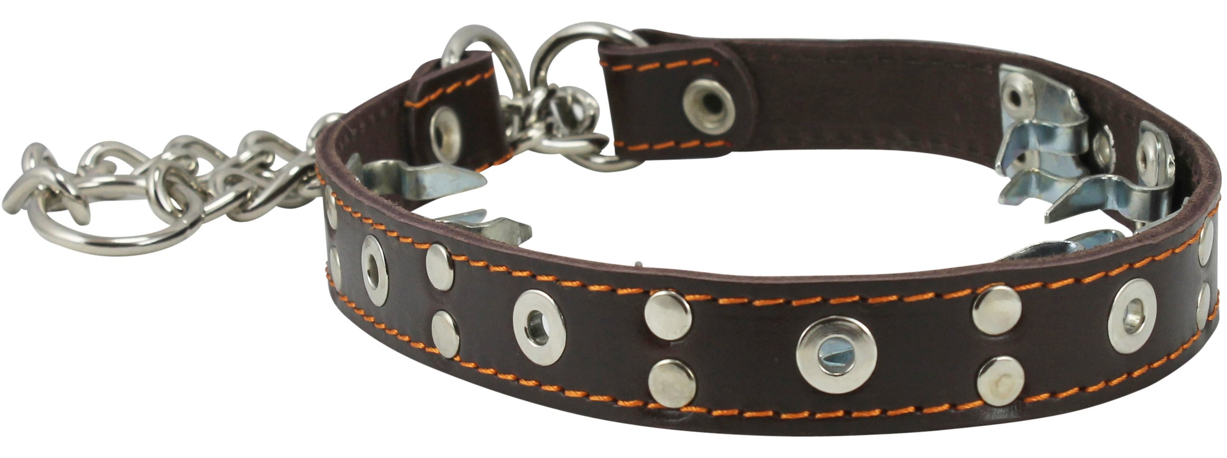 Dogs My Love Training Genuine Leather Pinch Martingale Dog Collar Studded 4mm Link Brown 3 Sizes (15.5''-19'')