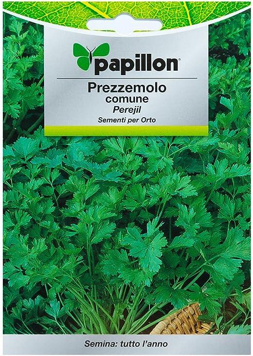 Semillas Perejil Comun (8 Gramos): Amazon.es: Jardín
