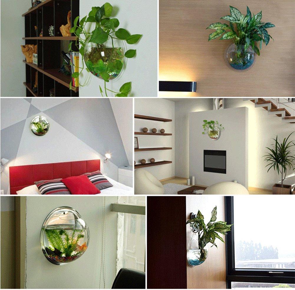 Creative ollas de pared colgante sala de estar paredes decoradas pecera-D: Amazon.es: Jardín