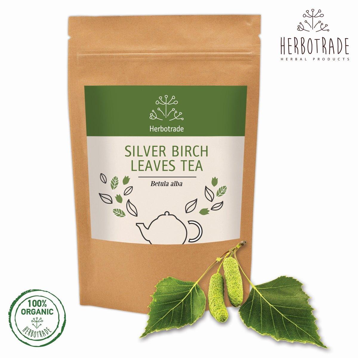 Betula pendula Silver Birch Delivery November onwards 40-60 cm bare root