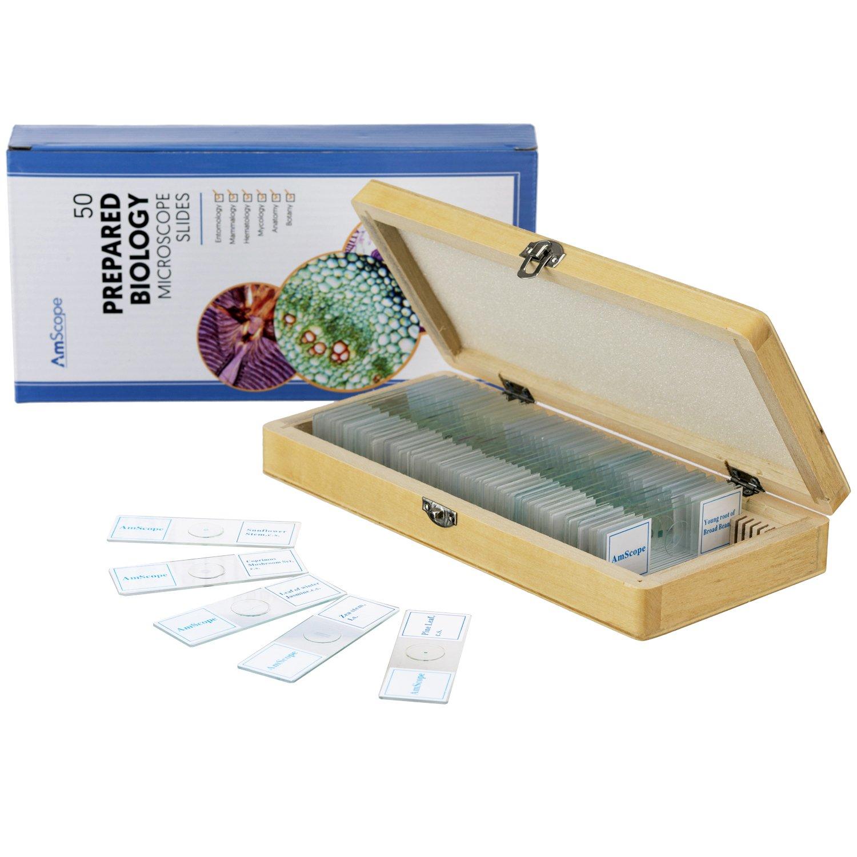 AmScope 50 PC生物学動物学植物学、昆虫学ガラスは木箱ケースに顕微鏡スライドを準備しました   B0055E4EVW
