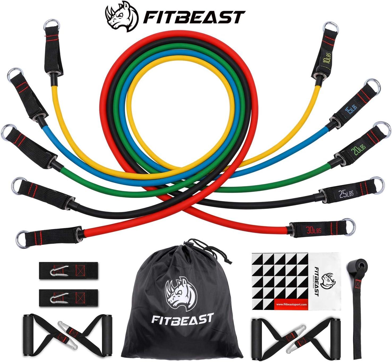 Set de Bandas de Resistencia de FitBeast, bandas elásticas para entrenar con soporte de 100lbs, Kit de Bandas para Entrenar con 5 tubos, 4 Manijas de Hule, Correas para Tobillos, Anclaje para puerta