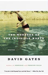 the wonders of the invisible world summary