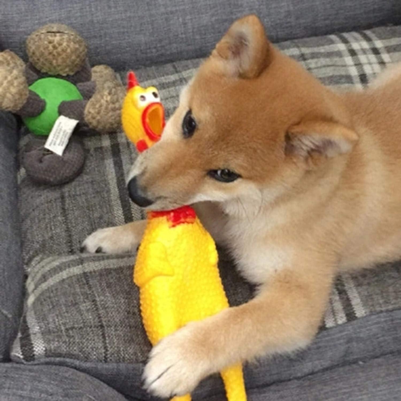 Banbie 17Cm Screaming Chicken Squeeze Sound Spielzeug Haustier Ungeduld Dekompression Tool Fun Gadget