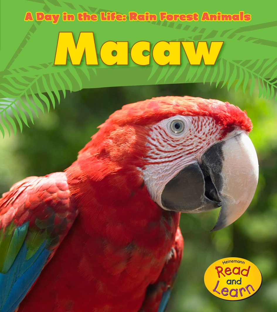 Macaw (A Day in the Life: Rain Forest Animals) ebook