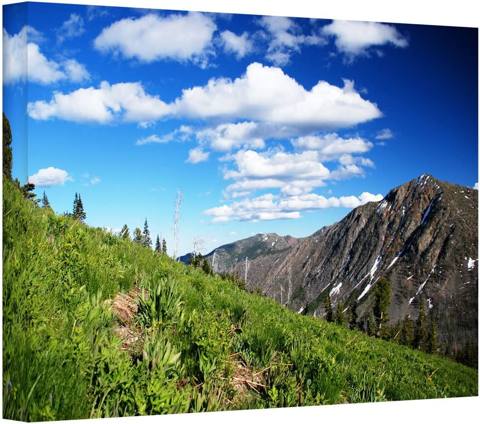 Artwall Mountain Meadow Gallery Wrapped Canvas Art By Dan Wilson 24 By 36 Inch Posters Prints