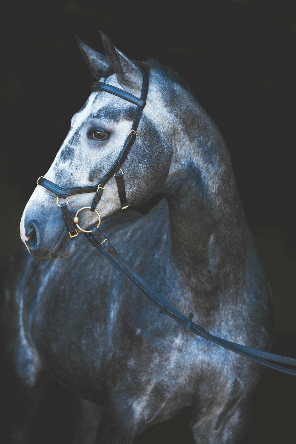 Horseware Rambo micklem Compétition en caoutchouc Rênes en cuir Horseware Ireland
