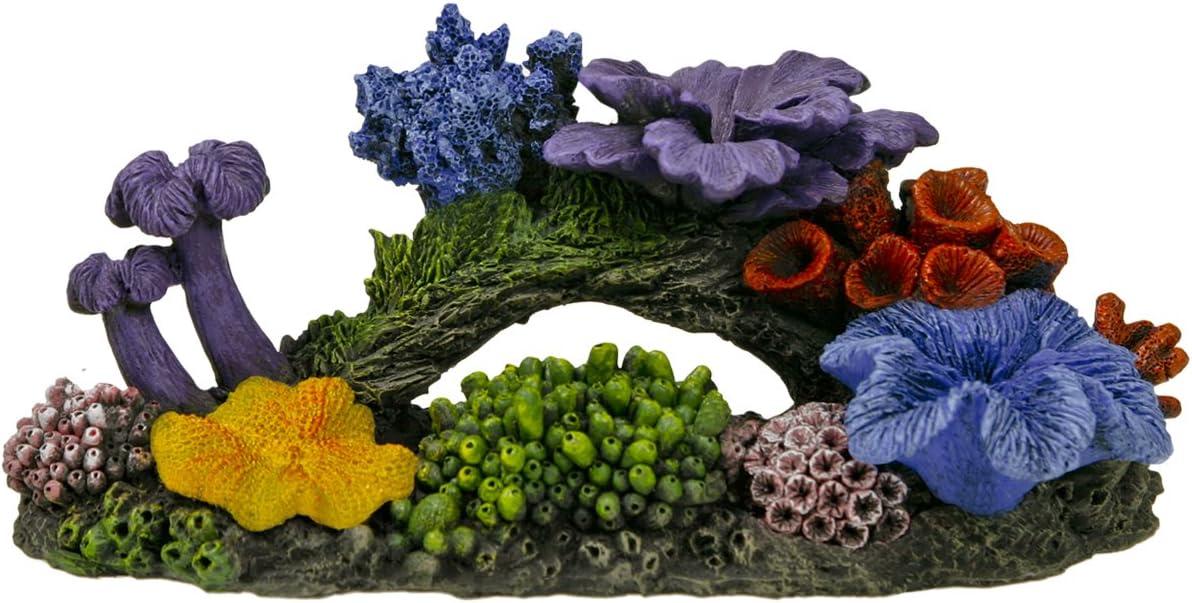 Exotic Environments Hawaiian Reef