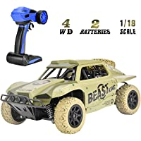 Rainbrace Off Road RC Racing Cars Toys for 6-15 Years Old Boys Kids, 4WD RC Cars 4x4 RC Truck Monster Vehicle Remote Control Car High Speed RC Crawler Cars (Random Colors)