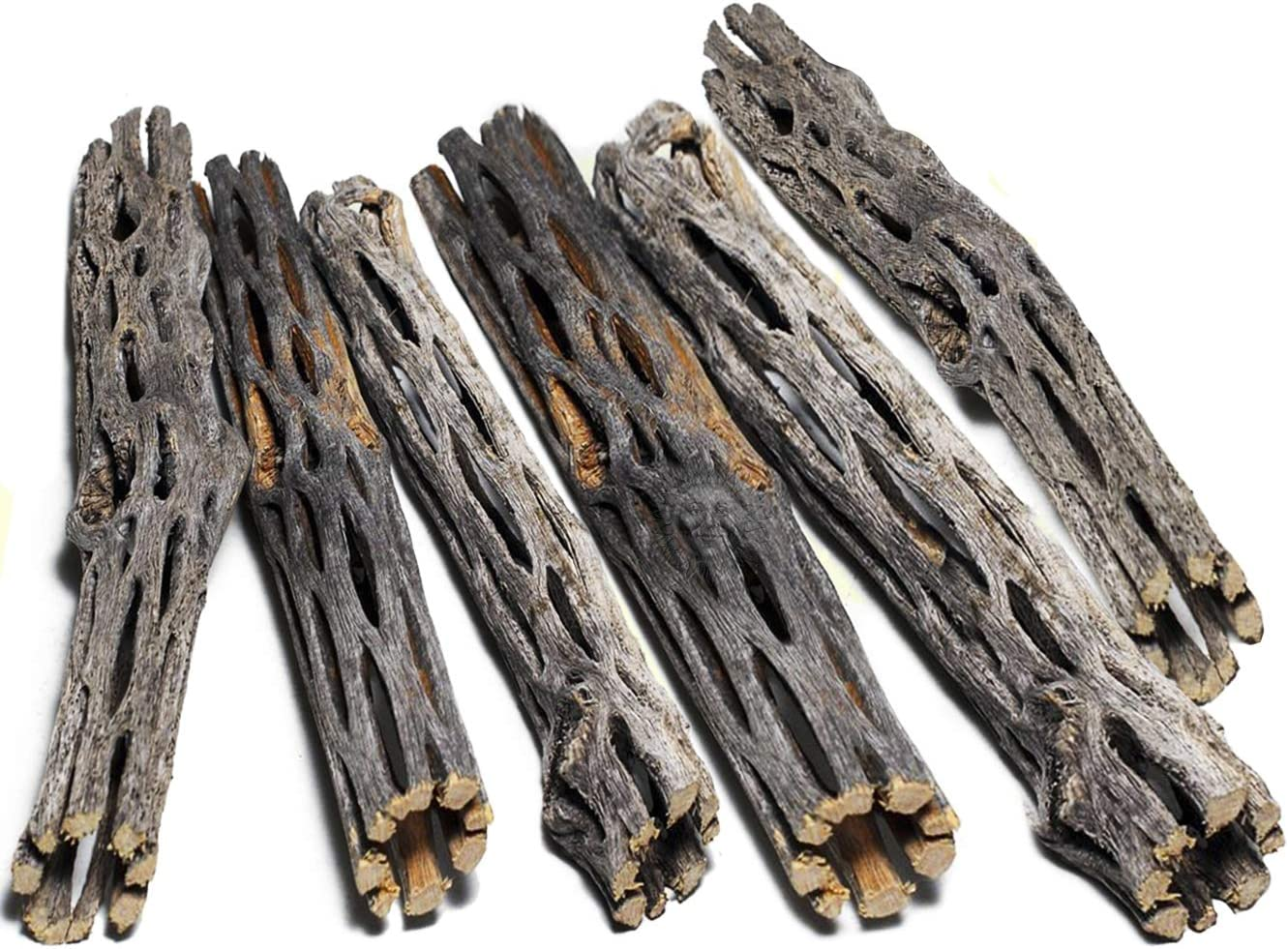 SunGrow Cholla Wood, Aquarium Decoration and Chew Toys for Small Pets, Artistic Home-Decor, Added Nutrition, Long Lasting Driftwood, for Playing and Hiding