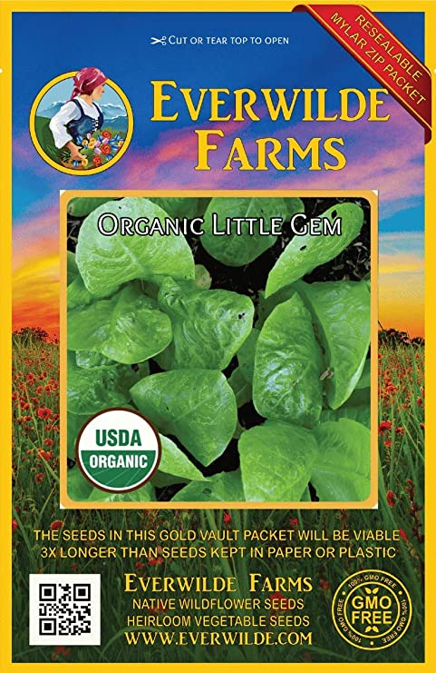 Everwilde Farms Mylar Seed Packet 500 Red Arrow Sprouting Radish Seeds