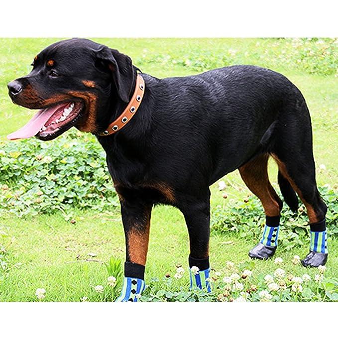 PsmGoods® - Calcetines de deporte, bota, para mascotas, cachorros y perros, con suela de goma antideslizante e impermeable; color azul y verde: Amazon.es: ...