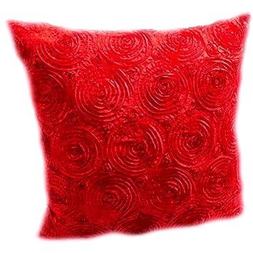 Amazon.com: Lif 3d de rosas rojas acento decorativo Throw ...
