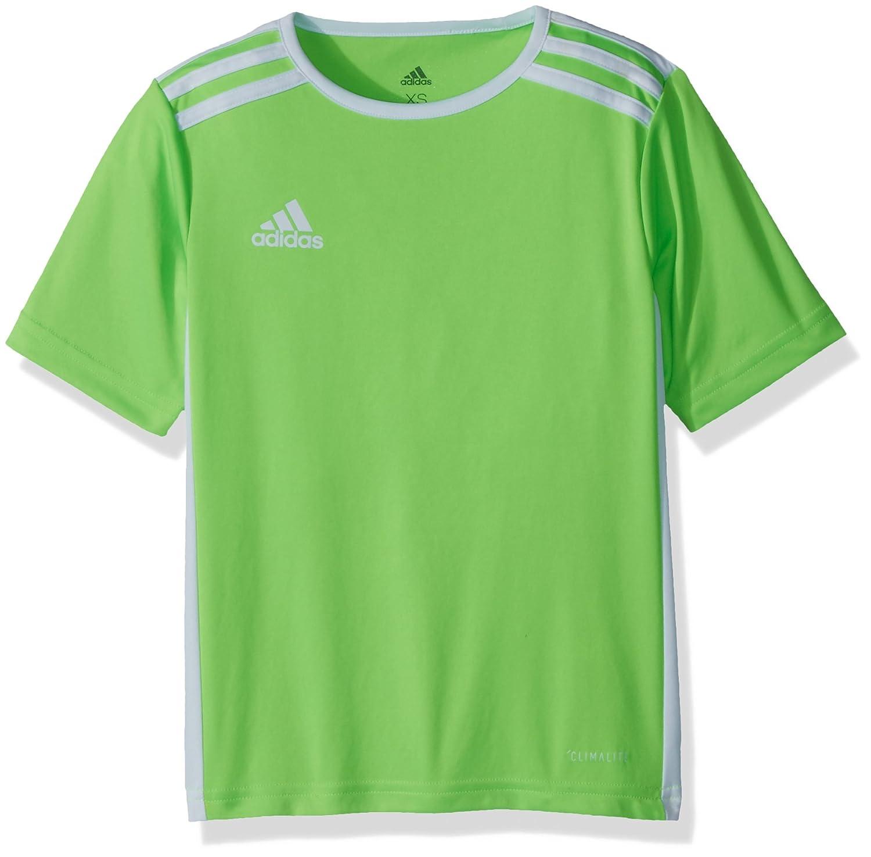 Adidas エントラーダジャージー 男子用 サッカー 18。 B0721VTQ95 Medium|Solar Green/White Solar Green/White Medium