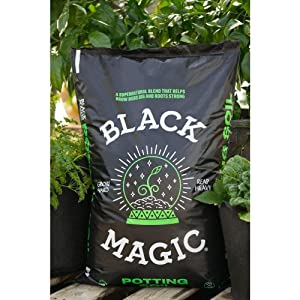 Black-Magic-Soil-review