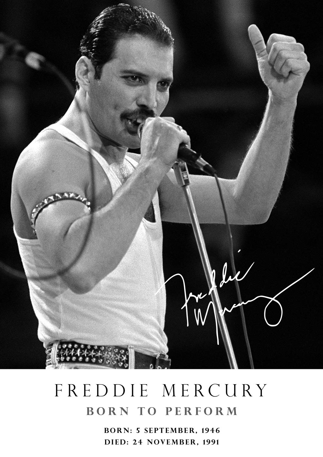 Freddie Mercury Poster Classic Pose Tribute Signed Copy 33 Born 5 September 1946 Died 24 November 1991 Queen Music Icon Legend A3 Poster Print Picture Buy Online In Turkey At Turkey Desertcart Com 50486666