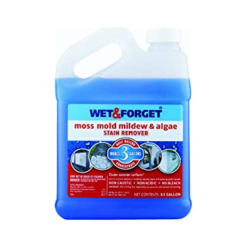 wet and forget wet and forget moss mold mildew u0026 algae stain remover