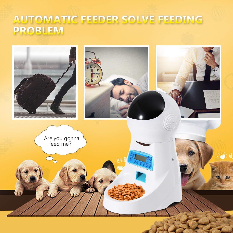 MUTANG Alimentatore automatico per gatti Alimentatore per alimenti per per per animali domestici 4 Pasti per Cat Dog-Timer Programmabile, Registrazione audio, Controllo di porzioni per cani di piccola taglia 3380ff