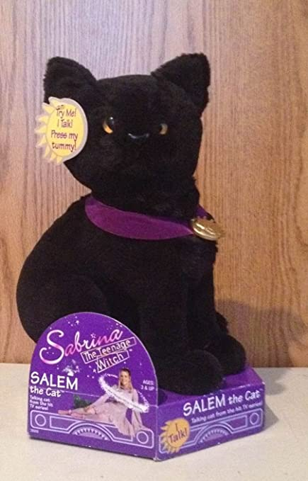 Sabrina The Teenage Witch Trading Card Box Plush Bear