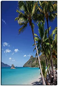 Hitecera Catseye Beach on Hamilton Island in The Whitsundays Room Decor for Women,054668 Room Decorations for Bedroom,12''Wx16''H