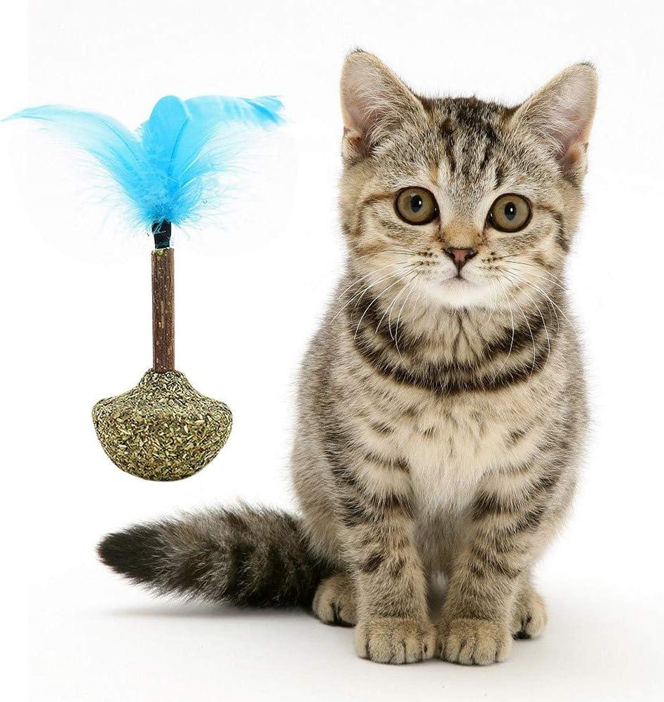Savlot - Juguetes de Hierba para Gatos, Juguetes interactivos para Gatos, cascabeles sanos Normales de Animales Familiares y Juguete de culbudor con Pluma para Gatos, Bola Deliciosa de Hierba de Gato: Amazon.es: