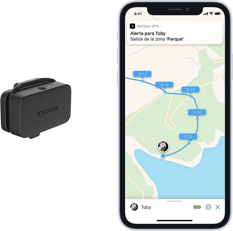 Invoxia Pet Tracker - Rastreador de GPS para gatos y perros con seguimiento de actividad, incluido ABO - Batería de larga duración - Ligero y pequeño