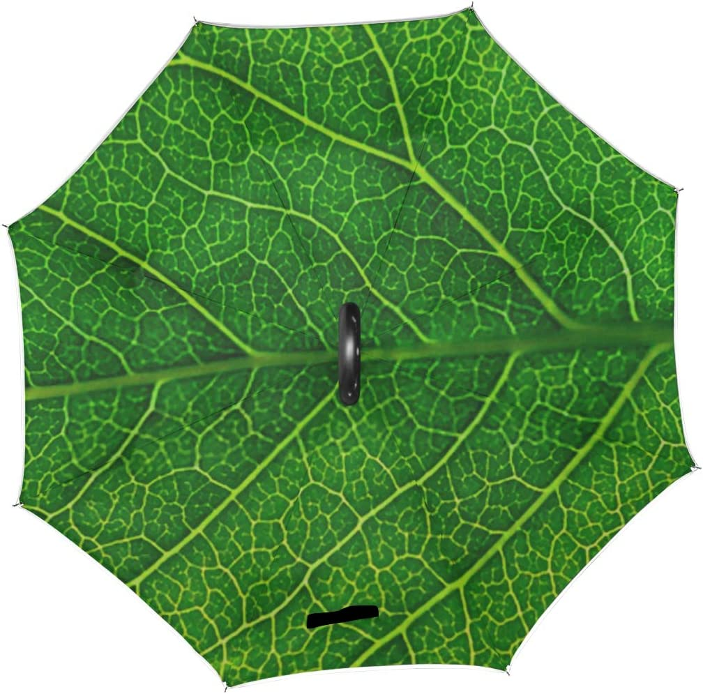 Double Layer Inverted Inverted Umbrella Is Light And Sturdy Close Leaf Macro Photography Reverse Umbrella And Windproof Umbrella Edge Night Reflectio