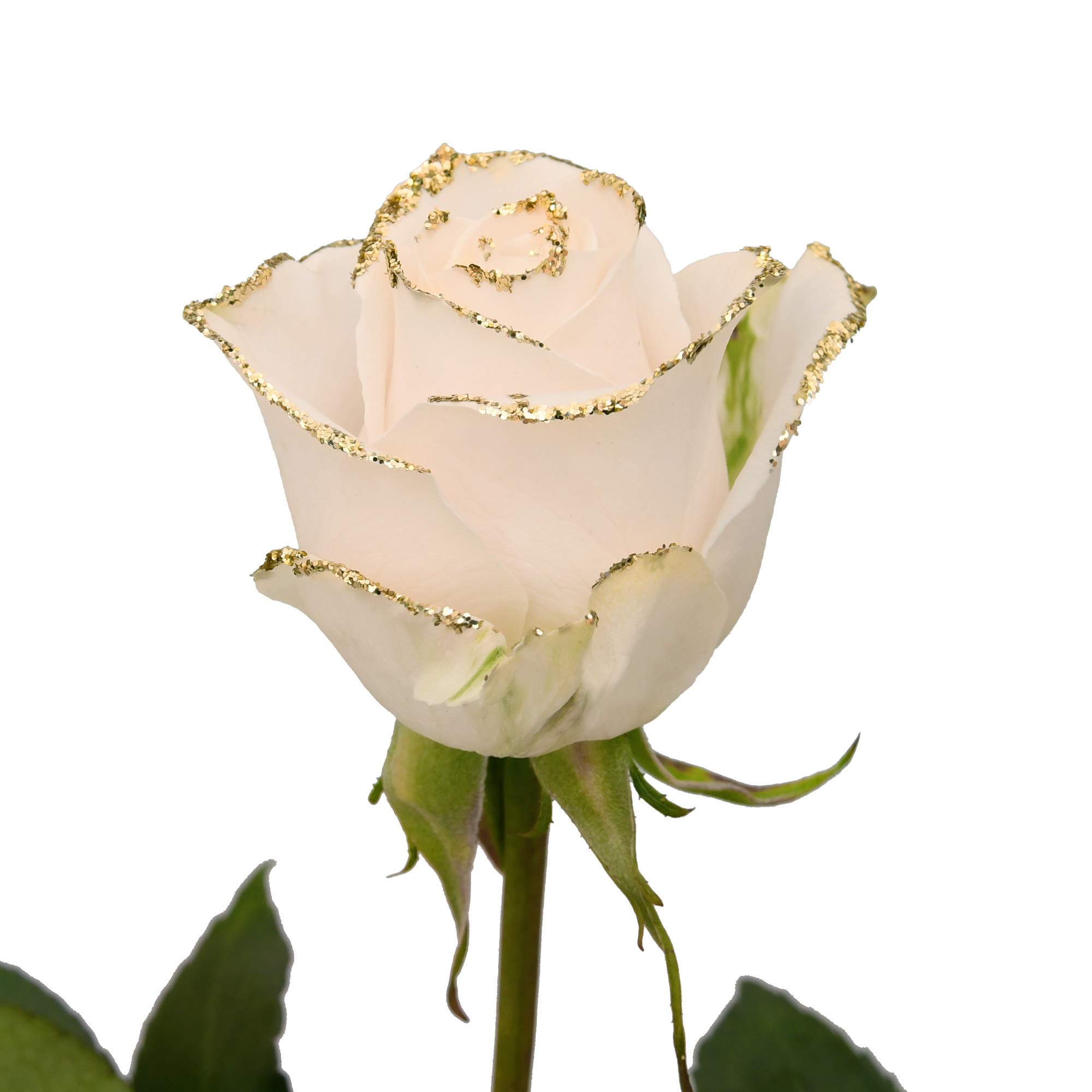 White Roses with Gold Glitter - Pack 50
