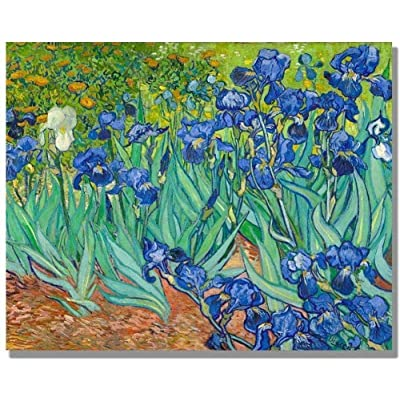 1000 Pieces Wooden Jigsaw Puzzle for Adult & Kids – Irises in The Garden by Vincent Van Gogh: Toys & Games