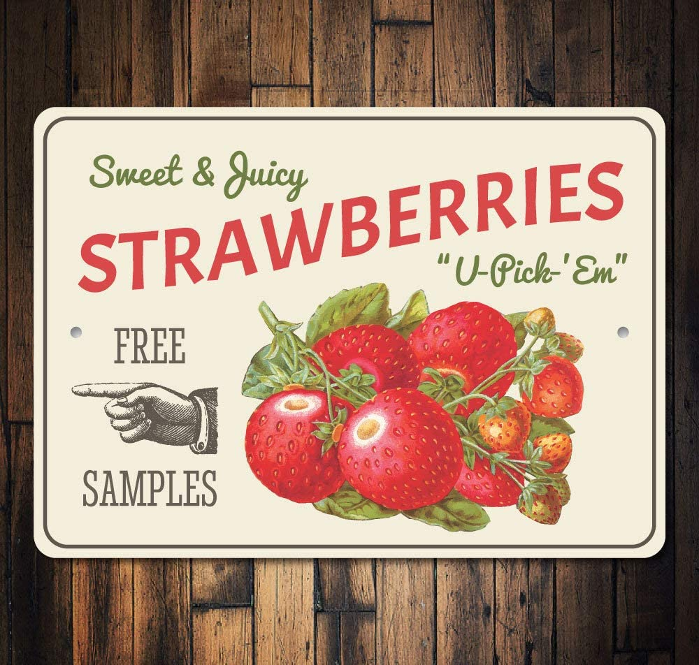 Amazon Com Dwi24isty Metal Sign Strawberries Berry Kitchen Decor Strawberry Farm Field Pointing Hand Quality For Outside Inside Home