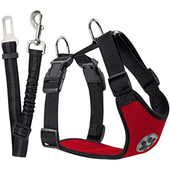 Amazon.com : PAWABOO Dog Safety Vest Harness, Pet Dog Adjustable Car