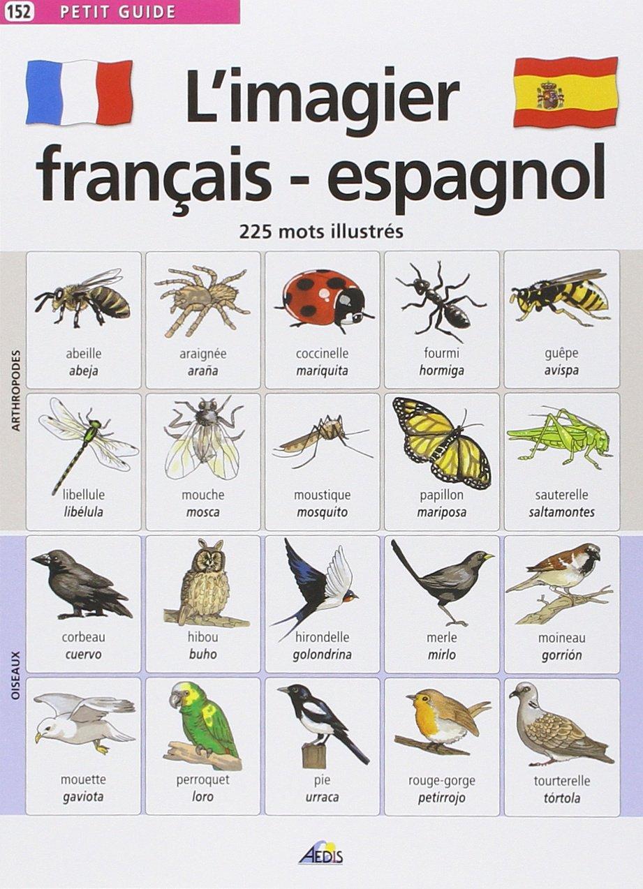 Top Amazon.fr - L'imagier français-espagnol : 225 Mots illustrés  KP37