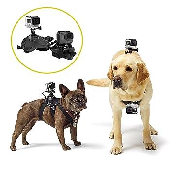 mekingstudio para mascotas perro pecho arnés chaleco Correa Cinturón Mount para GoPro Hero 4 Sesión 3 Cámara de acción: Amazon.es: Electrónica