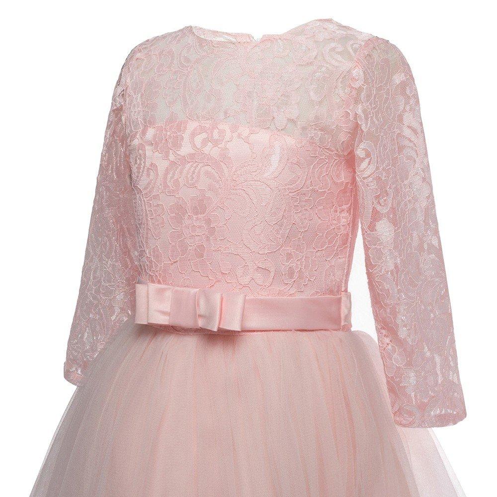 feiXIANG Vestido de Las niñas niñas de los niños de Cinco Puntos de Encaje Bordado Arco Vestido de Princesa Vestido de Falda Vestido de Fiesta de cumpleaños ...