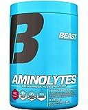 Beast Sports Nutrition, Aminolytes Advanced Amino Matrix, Beast Punch, 14.1 Ounce